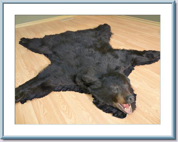 ... Polar Fur Traders   Black Bear Rug